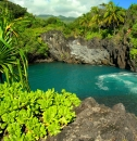Maui Excursions and Tours